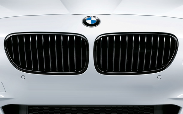 D980-0008 - BMW Performance Kidney Grille Set - 2011-2016 BMW 5-Series Image